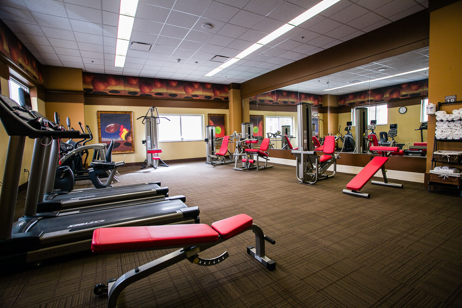 overton gym with treadmills, a bench, and several other machines