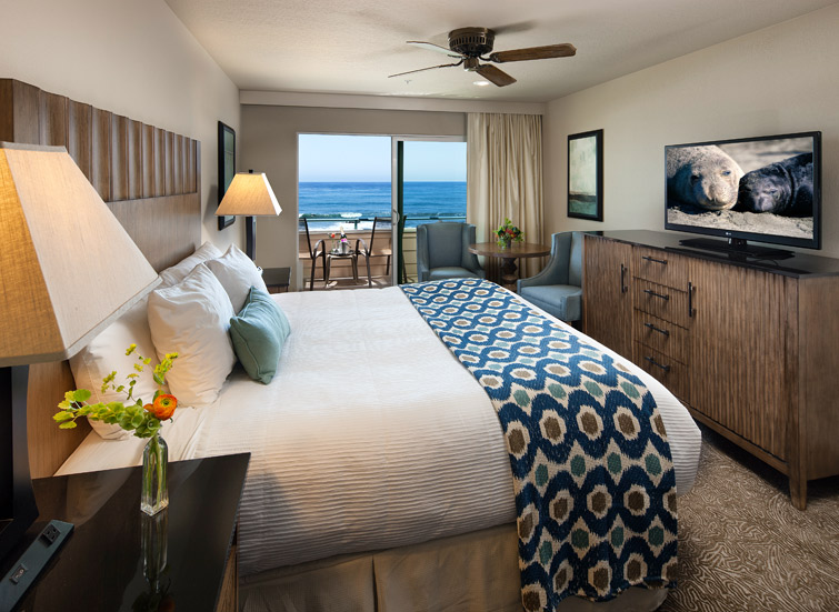 an ocean view guest room with king bed
