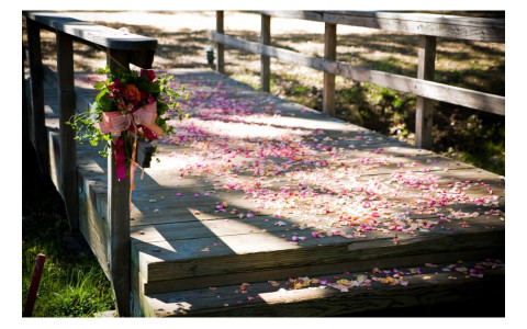 Flower petals scattered on a wooden pathway for a wedding