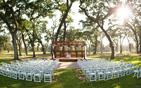 Wooden Pergola setup underneath trees for a wedding