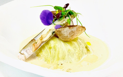 plate of appetizer from hotels restaurant with clams and purple flower garnish