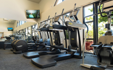 TechnoGym fitness equipment located at the Spa fitness center