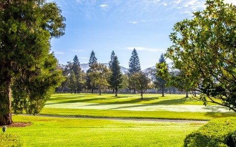 Beautiful landscape photo of Silverado golf grounds