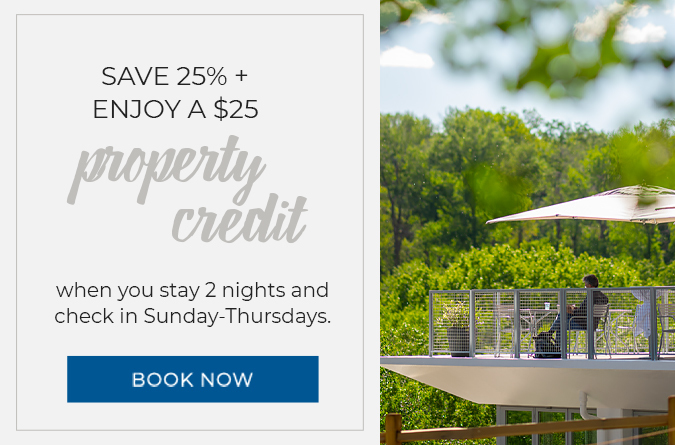 Save 25% + Enjoy a $25 Property Credit
