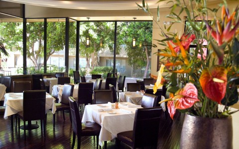 Airtel cafe with its glass walls and tables draped in white linen and pots of exotic flowers