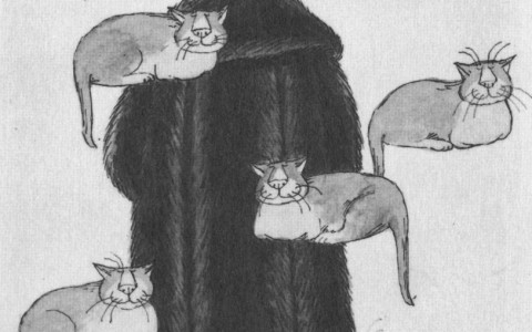 edward gorey illustration of man in a fur coat surrounded by floating cats