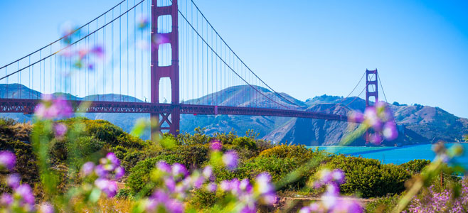 Golden Gate bridge during spring