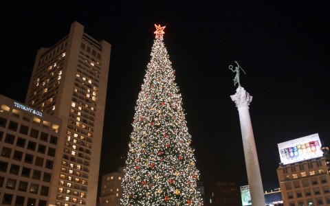 Union Square Christmas Tree Lit up next to buildings