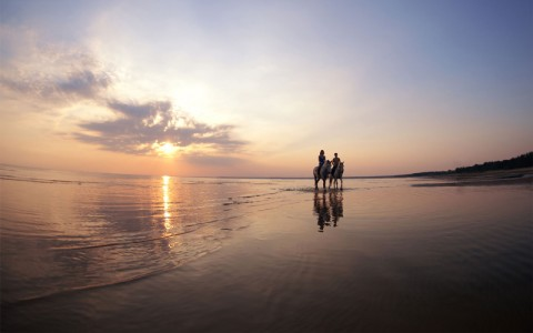 horse back riding on a beach will the sun sets