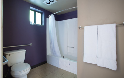 alura interior room image showing bathroom toilet and shower