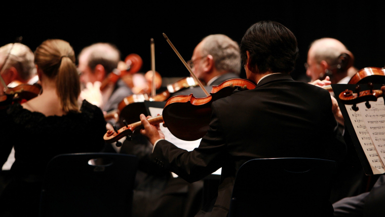 Rear view of orchestra violin section