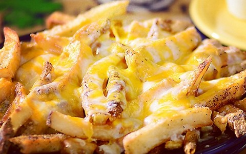 Cheese Fries on a Plate