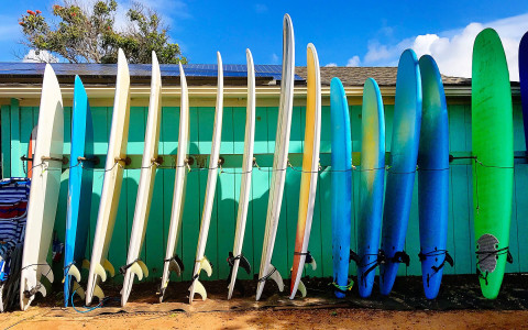 Several surf boards are lined up against a wall