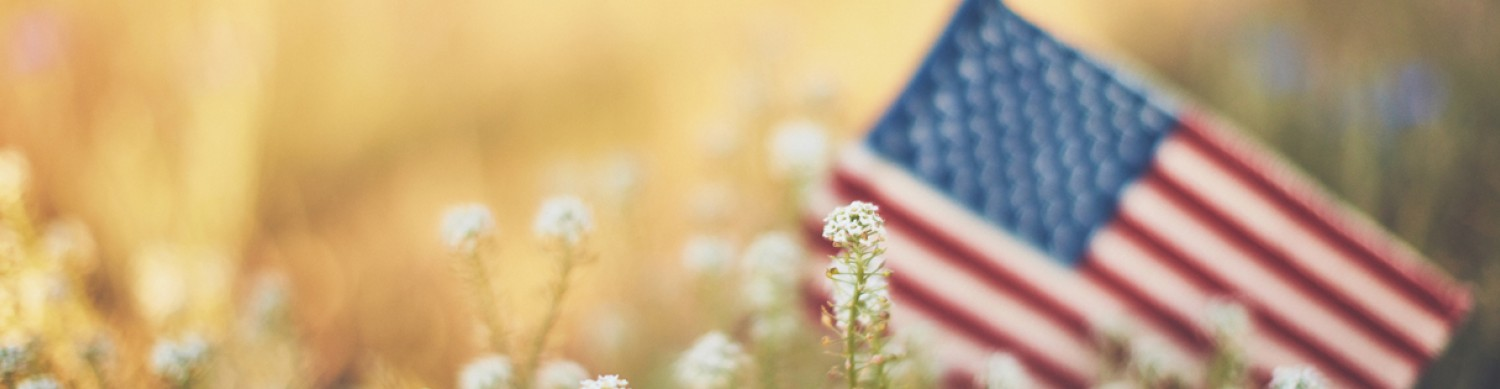 American flag in a field of flowers