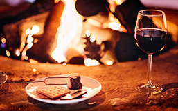 toasting marshmallows by the fire and wine