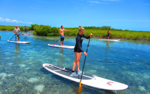 The Ultimate Eco Adventures with Beach Enclave and KiteProvo