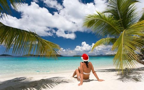 Rejoice in a Tropical Christmas