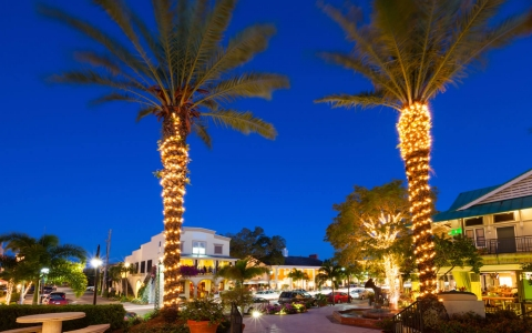 Outdoor shopping plaza at night with lit up palm trees