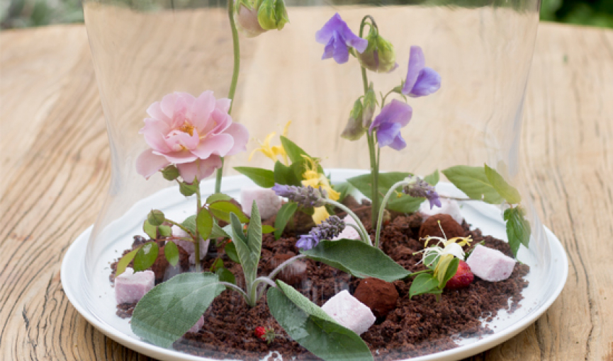 White plate with glass dome cover over dirt & flowers