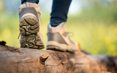Detail of Womans Feet in Sneakers Walking over Tree Log