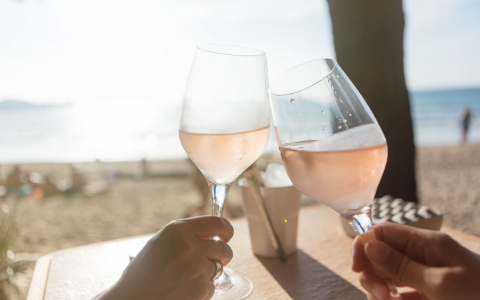 Close up of two people toasting with rose wine