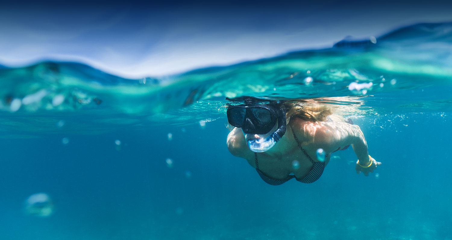 a snorkeler swimming just below the water line