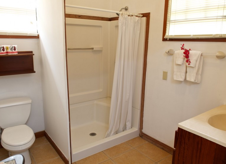 deluxe room bathroom with a shower, sink, and toilet