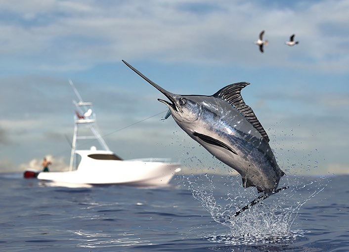 a gray fish with a long pointed nose jumping out of the water with a white boat in the back