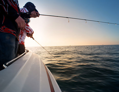 Bodega bay lodge activities things to do in bodega bay for Bodega bay fishing charters