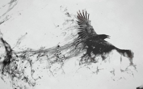 painting of a black bird