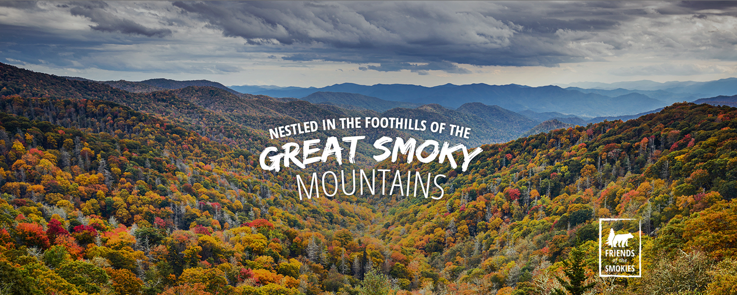 Nestled in the foothills of the Great Smoky Mountains