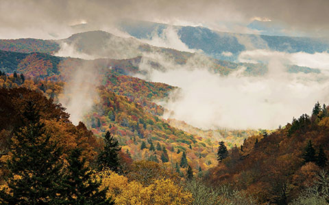 Smokey Mountains with trees touching clouds