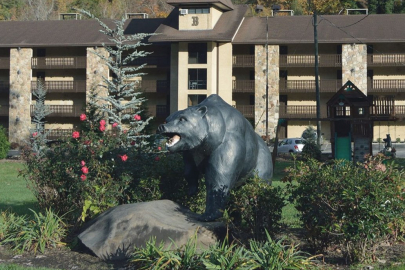 Brookside Resort Cast Metal Bear