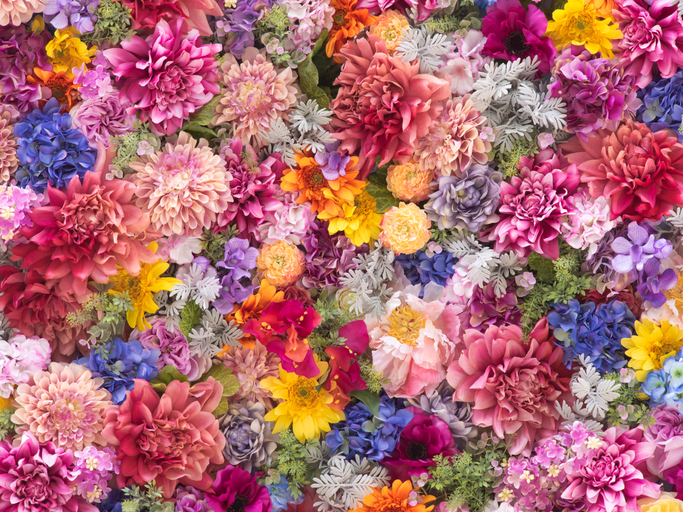Over 70 Years of Floral Masterpieces