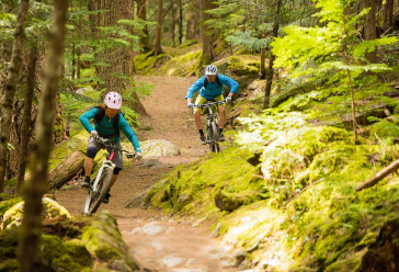 Two people biking in the forest