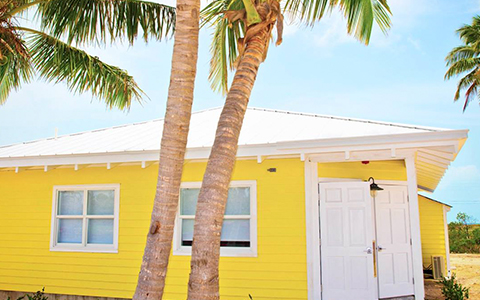 exterior shot of a yellow building with palm tree