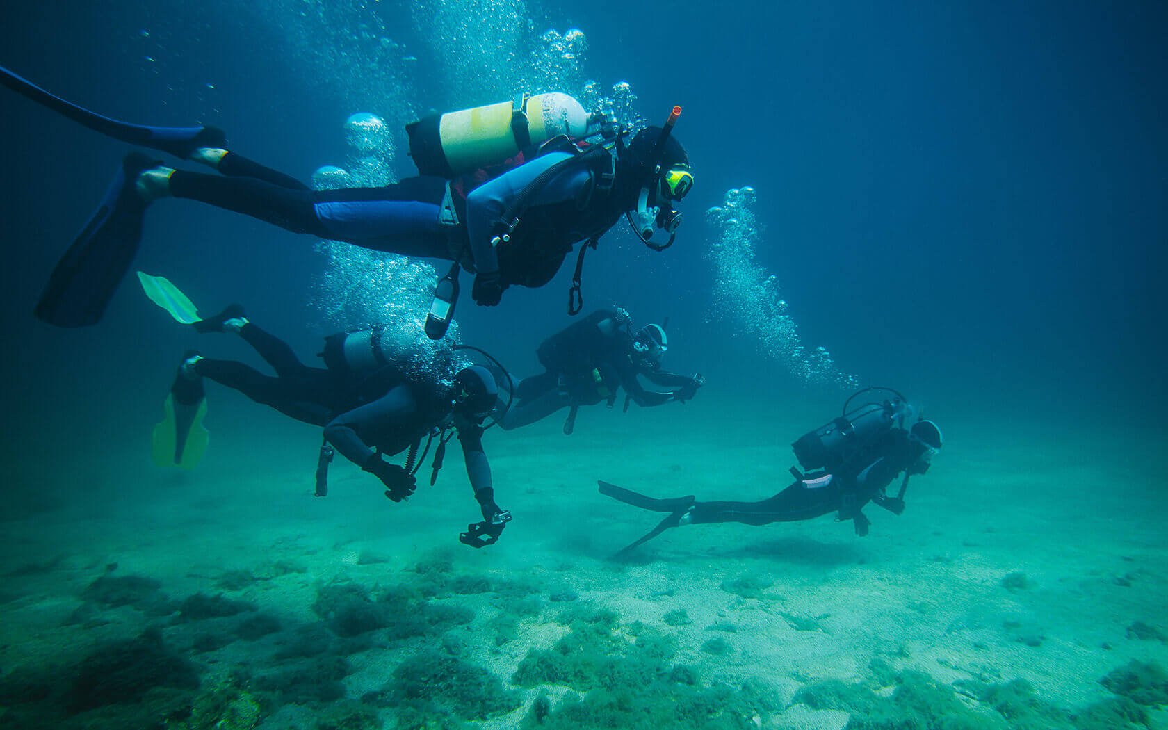 Group of people scuba diving