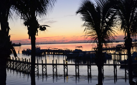sunset by dock and palm trees