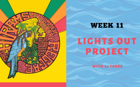 Lights Out Project with 23 Treez - Summer Sunday Reggae Series Week 11