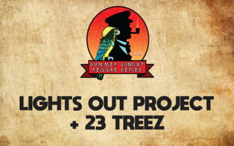 Lights Out Project + 23 Treez
