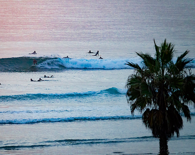 surfers on their surf boards in the ocean