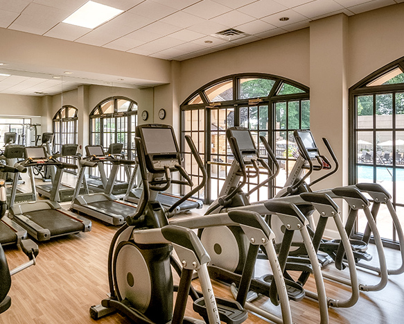 treadmills and ellipticals in the fitness center