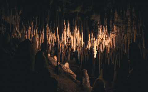 Stalactites in a Cave