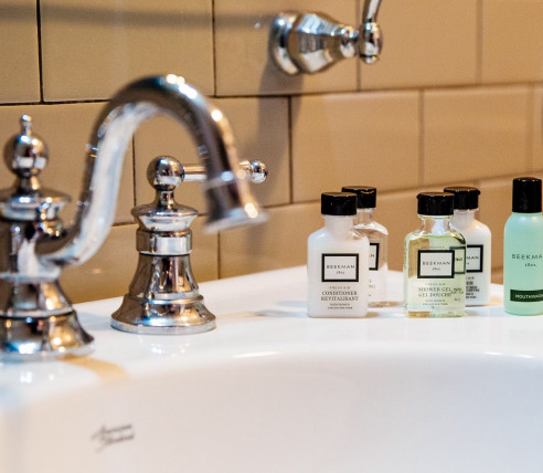 sink with mini shower essentials