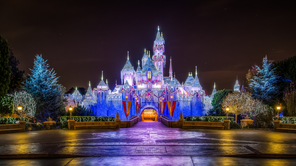 Disney Land Castle at Night