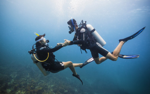 couple scuba diving in the ocean