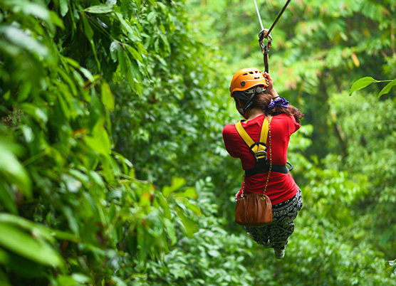 a person riding on a zipline in the forest