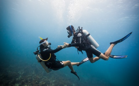 Scuba For Two