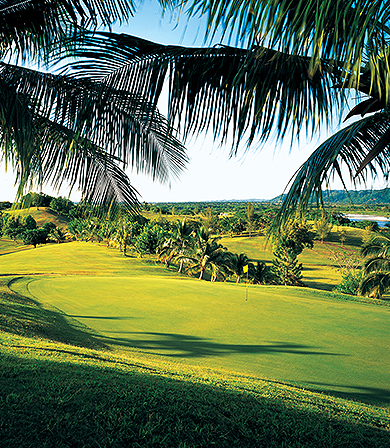 5-Night Golfers Dream Package