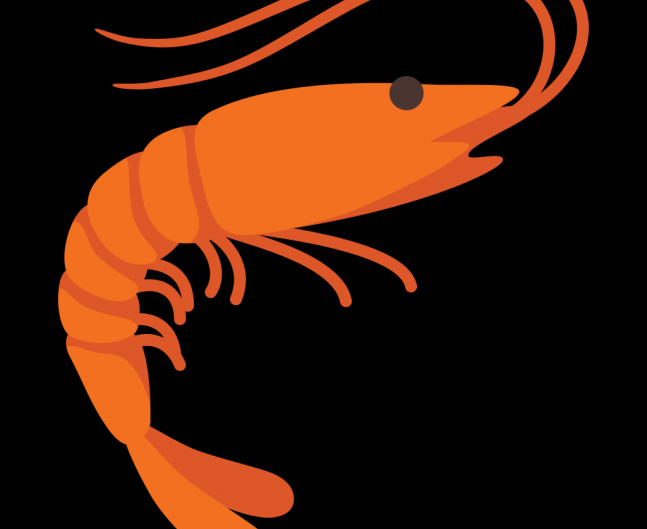 Bright Orange Cartoon Clip Art Shrimp